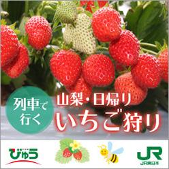JR東日本 びゅう イチゴ狩り予約